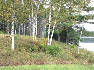 Baddeck house photo - Tranquil Setting: Bay Water's Edge with Birch Trees framing a Relaxing View.