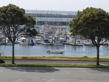 Pillar Point Harbor is a 20 minute walk from the Apt. on the Coastal Trail.