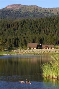 Otter Pond. Ski trails, bike trails and hiking out your door.