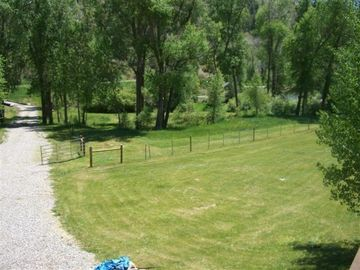 NE section of yard (viewed off deck)- down to fish pond & Lightner Creek