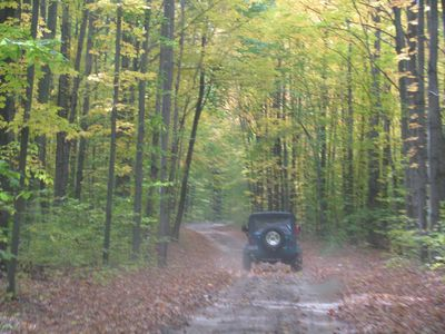 Indian River cottage rental - Plenty of Trails