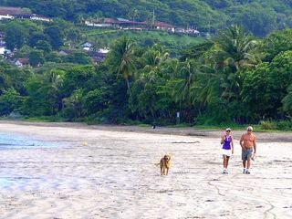 Playa Hermosa villa photo - The beach at Playa Hermosa