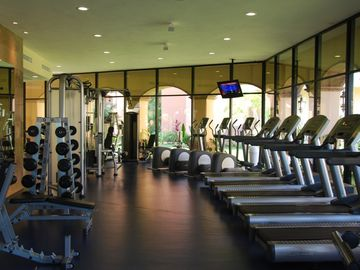 Professional fitness center