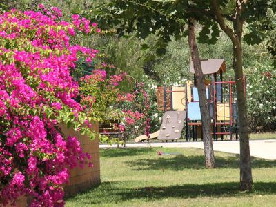 Beautiful flora and fauna surround the gardens, playpark and local area