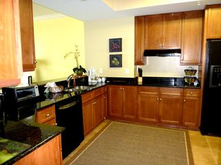 Perdido Key condo photo - Large Kitchen-5th Floor.Granite,Smooth Cook Top,Upgraded Appl.Fully Equipp ++