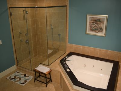 Spa-like master bath, shower has 3 sprays, teak-rimmed jacuzzi, walk-in closet