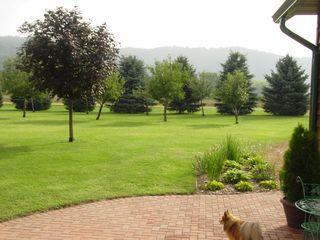 Lake Pepin house photo - View from the Patio by the front door with the front yard and bluffs beyond.