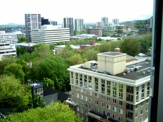 Portland condo photo - Park Blocks Trees follow middle of picture