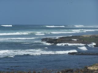 Las Gaviotas house photo - Surfing Beach