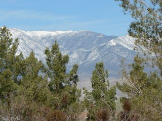 Pahrump house photo - View from livingroom window