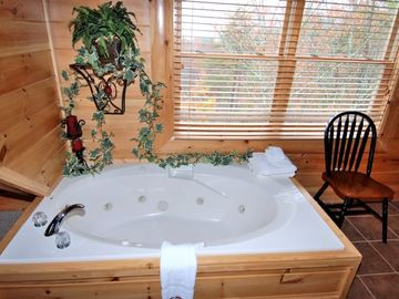 Bedside Jacuzzi for Romance in Huge Master Bedroom Anniversary???