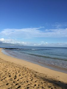 The beach and reef where turtles are spotted in the early morning and evening!