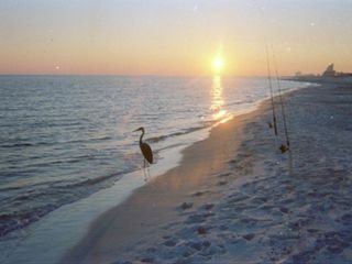 Orange Beach condo photo - Beautiful Orange Beach