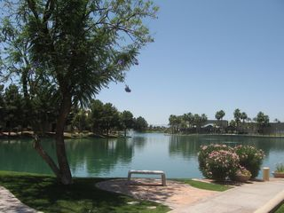 Chandler condo photo - Lakeside on the property. Shops just across the lake on the right!