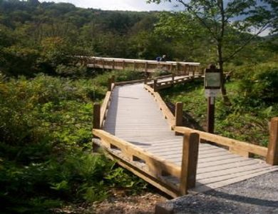 Boardwalk over wet lands to Appalacian Trail to 2nd highest water fall in VT,