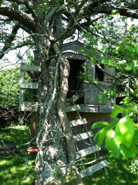 A fun tree house near the pool with electricity, and tetherball out front.