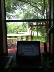 Austin house photo - View from the living room desk, watch squirrels and birds all day long