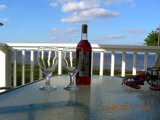 Havelock house photo - Relax on your deck and watch the dolphins go by