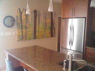 Calgary condo photo - great art and wonderful kitchen for cooking and entertaining