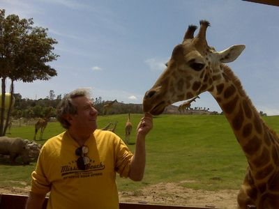 Feed a girafe at the Wild Animal Park!!
