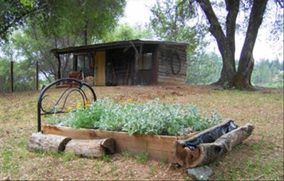 "Old original cabin with ""flower bed"""