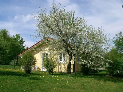 Spacious cottage, fenced 500 sqm garden, 200 m from the lake, dog welcome.
