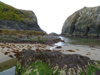 Bandon house photo - Go tide pooling at low tide!
