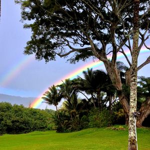 Double rainbow view from lanai of home