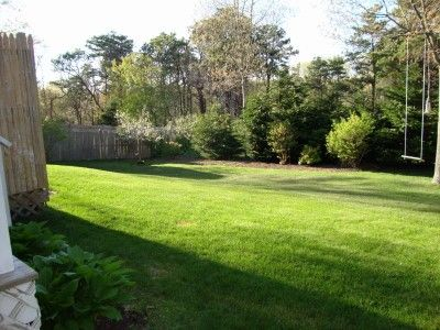 Back Yard - Great Privacy