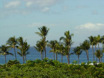 Wailea condo rental - Ocean View from Dining Rm