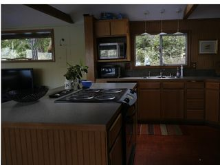 Port Angeles cabin photo - Kitchen Area