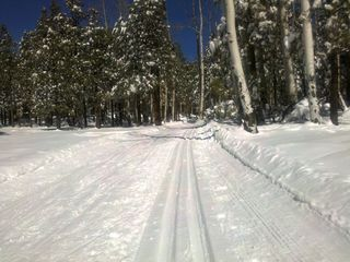 Flagstaff house photo - Nordic Center cross country skiing just 10 miles north of Flagstaff