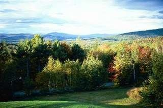 Littleton studio photo - The View in the Fall