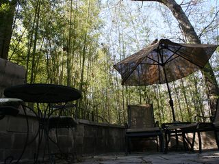 Bamboo provides additional privacy to the back patio space. - Austin studio vacation rental photo