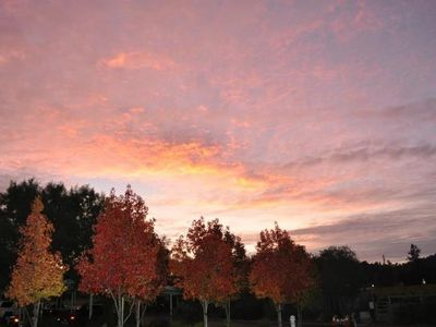 Healdsburg cottage rental - Beautiful Sunsets
