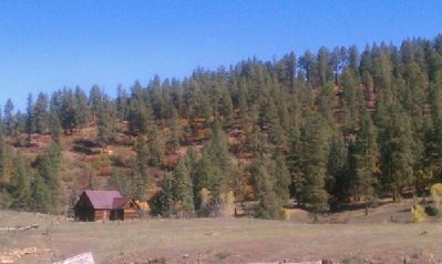 Top of the National Forest mountain range behind Paradise Ranch