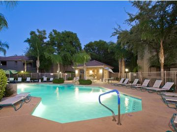 Other Scottsdale Properties condo rental - Resort style heated pool and hot tub! Plenty of lounges and lush landscaping!