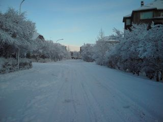 Reykjavik apartment photo - The street in Winter Wonderland!