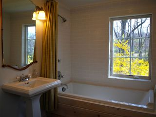 Patterson farmhouse photo - Master Bath with Soaking Tub and Views of meadows