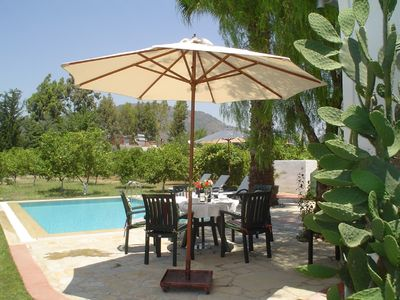 Dalyan villa rental - Lemon groves around the garden