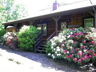 Massanutten lodge photo - Rhododendrons in full bloom by the front porch Early May