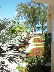 Grand Cayman condo photo - Stroll the beautiful grounds