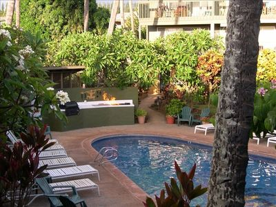 Relax poolside under the shade of the palm trees