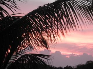Vieques Island property rental photo - Sun set