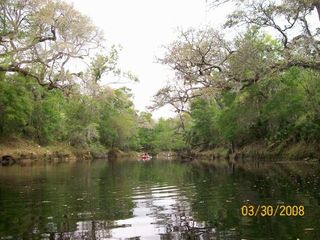 Steinhatchee cabin photo - On the River Kayaking!