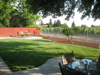 Napa house photo - Two backyard seating areas