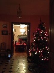 Saint-Georges-sur-Erve chateau / country house photo - Entry hall at Christmas.