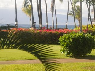 Kaanapali condo photo - View across pool from living room to the ocean