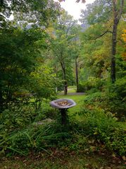 Phoenicia estate photo - Birdbath by Cottage