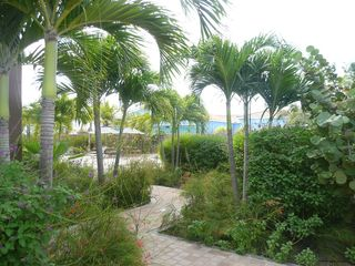 Bonaire apartment photo - Garden to walk through to the swimming pool